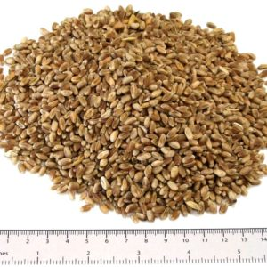 Poultry Wheat 25kg